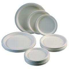 """Paper Plate - 6"""" - 1/2"""" Deep"""