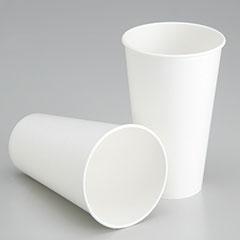Biodegradable Paper Cup - Cold Liquids - 12 oz