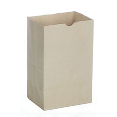 Waste Receptacle Paper Bag