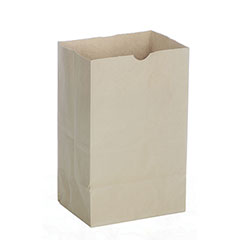 Garbage Receptacle Paper Bag
