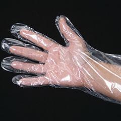 Food Service Powder Free Gloves