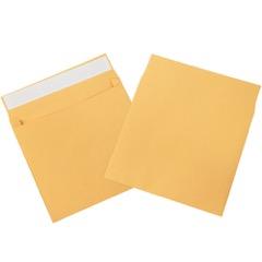 Expandable Self-Seal Envelopes