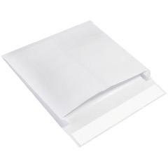 Expandable Ship-Lite® Envelopes