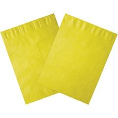 Self-Seal Colored Tyvek® Envelopes